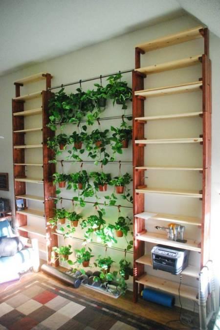 11 ý tưởng độc đáo để trồng rau cỏ trong nhà