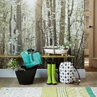 Thủ thuật 'mang rừng' vào nhà