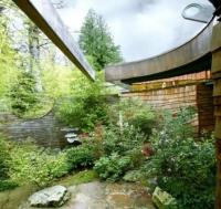 Wilkinson House – Ngôi nhà trong những tán cây / KTS Robert Harvey Oshatz