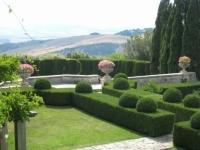 Hàng rào cây xanh - nét đẹp khu vườn kiểu Pháp