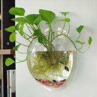 Bể cá treo mini đẹp hút hồn cho không gian nhỏ