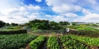Vườn rau trên nóc công trình Việt từng đoạt giải quốc tế