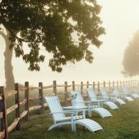 Những mẫu hàng rào ấn tượng cho khu vườn xinh nhà bạn